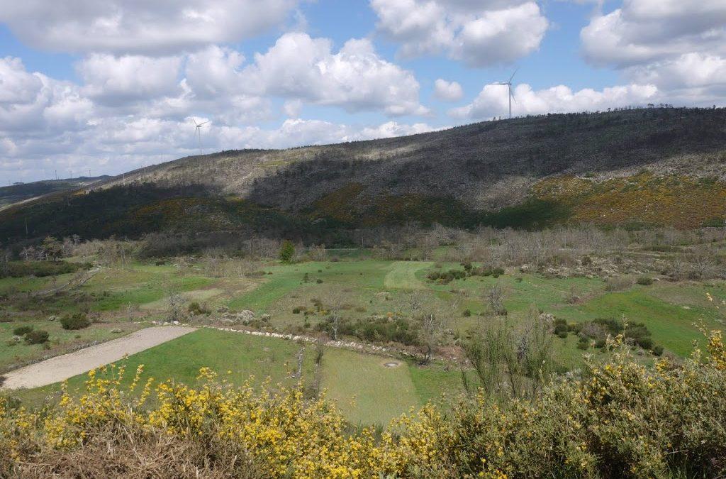 Pelo vale de Almofala