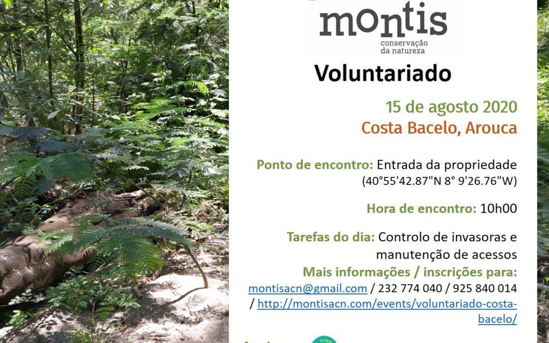 Voluntariado Costa Bacelo