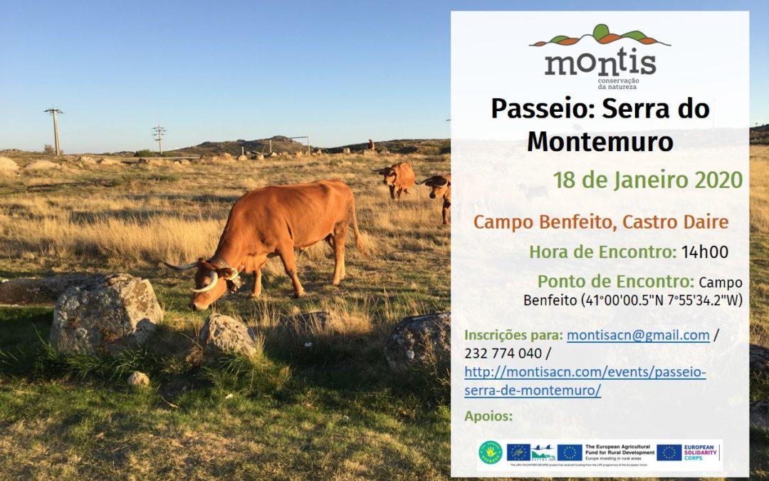 Passeio: Serra de Montemuro