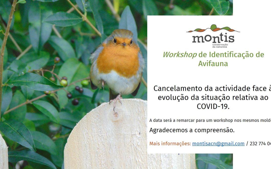 Workshop de identificação de Avifauna