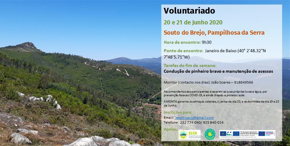 Voluntariado Pampilhosa da Serra