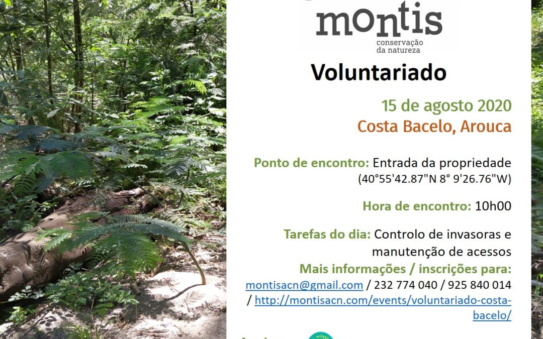 Voluntariado Costa Bacelo