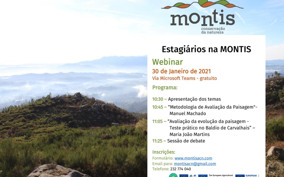 Estagiários na MONTIS – webinar